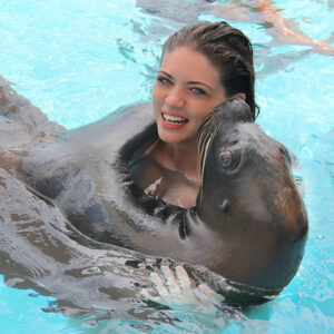 SEA-LION-ENCOUNTER_V_17-600X600