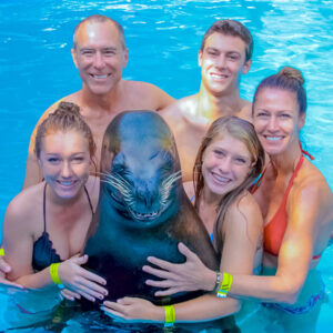 SEA-LION-ENCOUNTER_V_8-600X600